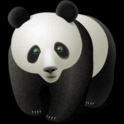 panda bear (representing Google algo update)