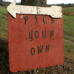 pick your own sign