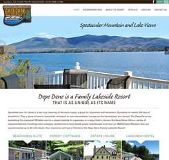 Depe Dene Website Design