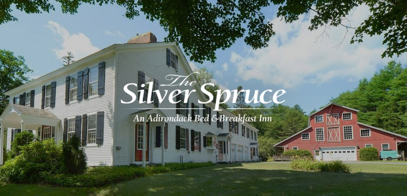 The Silver Spruce