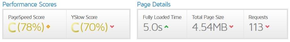 screenshot of page speed score
